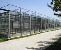 玻璃温室建造中通风设备有什么功能呢