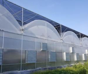 山东连栋温室建设