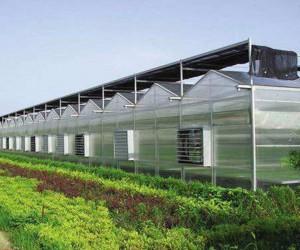 山西玻璃温室建设工程