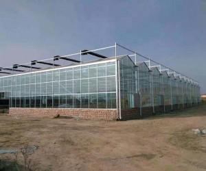 内蒙古温室大棚建设