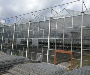 浙江玻璃温室案例