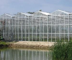 山东烟台玻璃温室案例