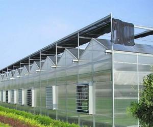 山东东营温室案例