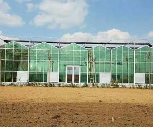 陕西智能温室工程建设